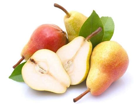 12 best images about pear top 12 health benefits of pears nashpati and nutritional
