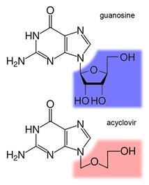 Salep Zovirax Acyclovir acv antivirus analog guanosine belajar biokimia indonesia