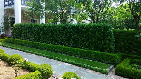 Landscape Ideas Hedges Path Around The Formal Garden Is Made With Cut Slate
