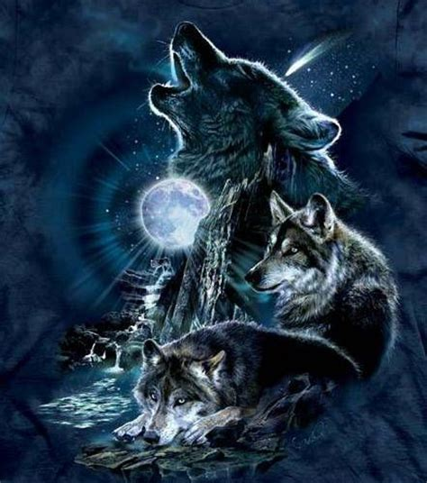 wolf moon peter owen 165 best wolves images on wolves animal paintings and wolf