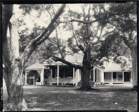 Cottage Plantation by Cottage Plantation Robert Tebbs Photograph The