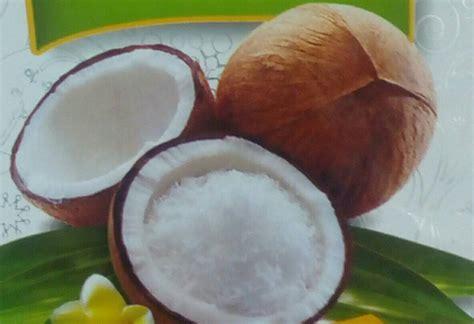 Santan Murni Kelapa jual santan kelapa bubuk sasa coconut powder 23g e