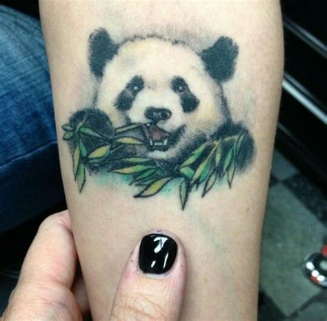 panda footprint tattoo 448 besten pandas bilder auf pinterest pandab 228 ren