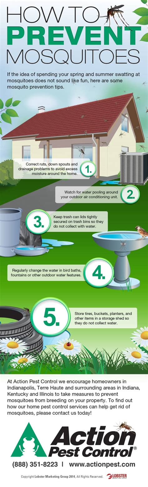 how to prevent mosquitoes in backyard how to prevent mosquitoes in backyard 28 images 17 best