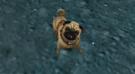 wow pugs wow pug by boilbilly on deviantart