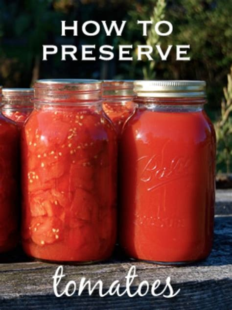 how to preserve your historic top 8 most popular ways to preserve tomatoes for winter
