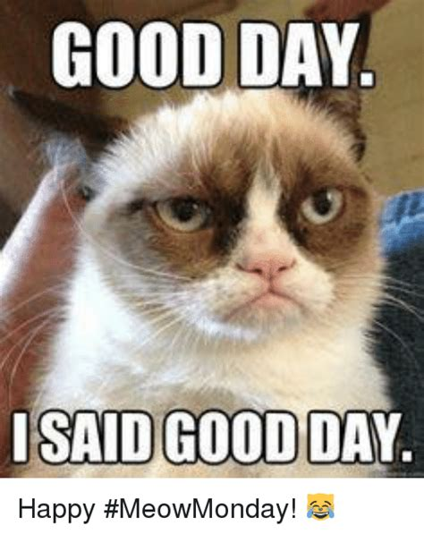 It Was A Good Day Meme - 25 best memes about i said good day i said good day memes