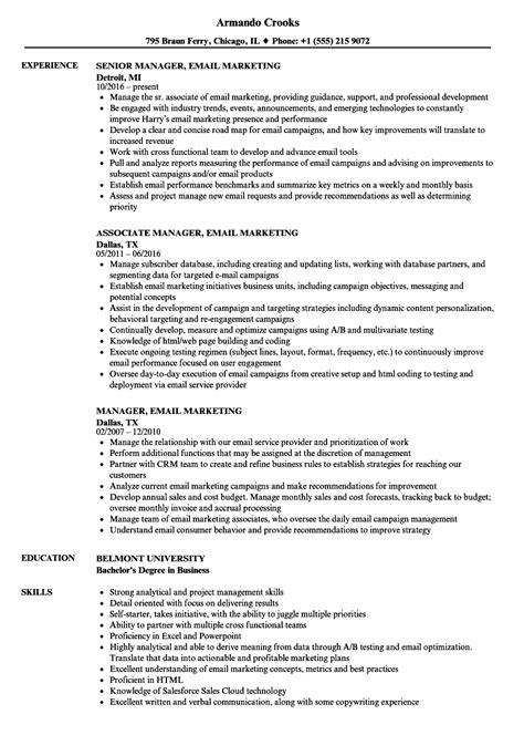 manager email marketing resume sles velvet