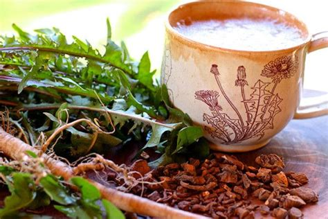Where To Buy Detox Drinks Near Me by 25 Best Ideas About Dandelion Root Tea On