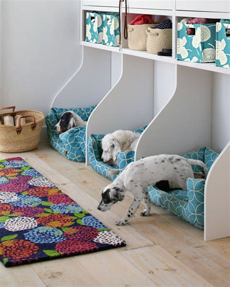 7 Ways To Organize Your Pet by Bhg Style Spotters