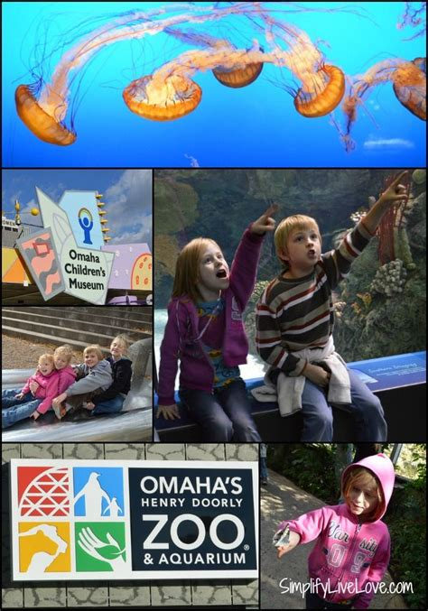 Henry Doorly Zoo Coupons by 17 Best Images About Omaha Zoo On Trips Zoos