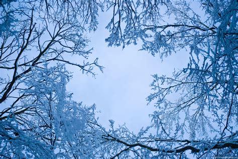 Snow Blue blue snow