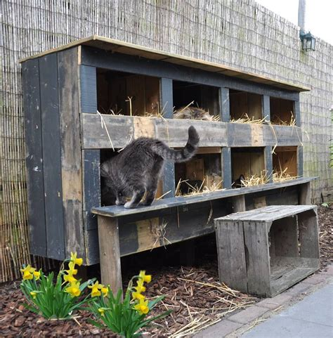 feral cat house feral cat house pinteres