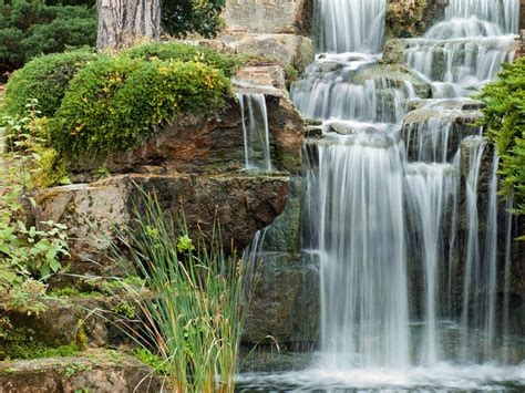 we build beauritul outdoor spaces including ponds and