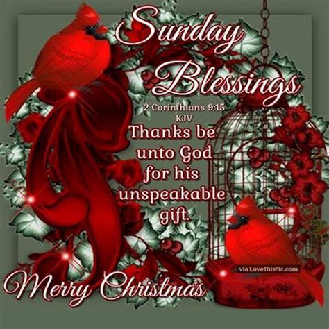 sunday blessings merry christmas quote pictures   images  facebook tumblr