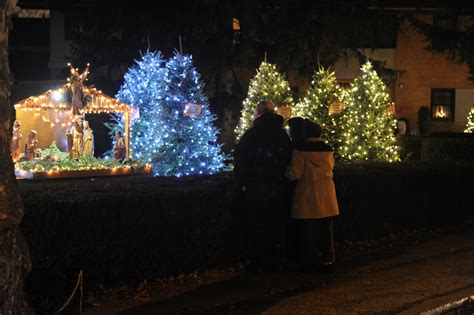 25 best auxiliary s tree aglow les 378 meilleures