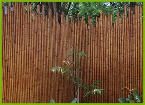 bamboo reed curtains 25 best ideas about bamboo fencing on pinterest bamboo