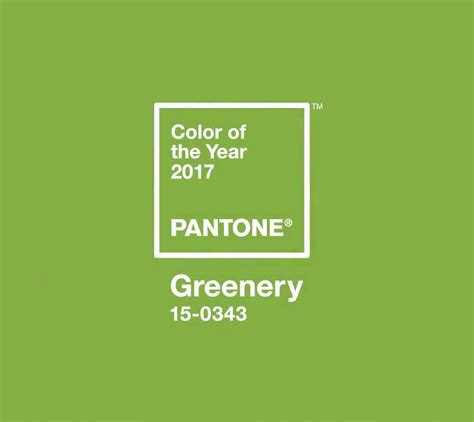 2017 Color Of The Year Pantone | greenery 2017 pantone color of the year erika firm