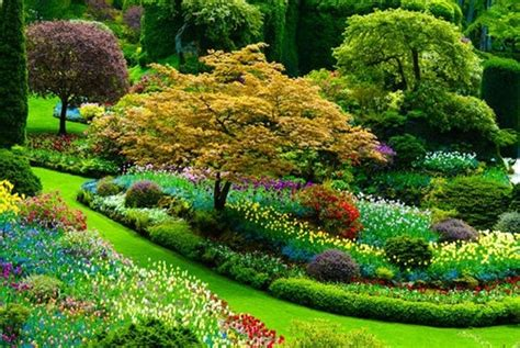beautiful flower garden pics beautiful flower garden in the photos of
