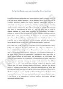 Cultural Analysis Essay by Link To Cultural Analysis Essay