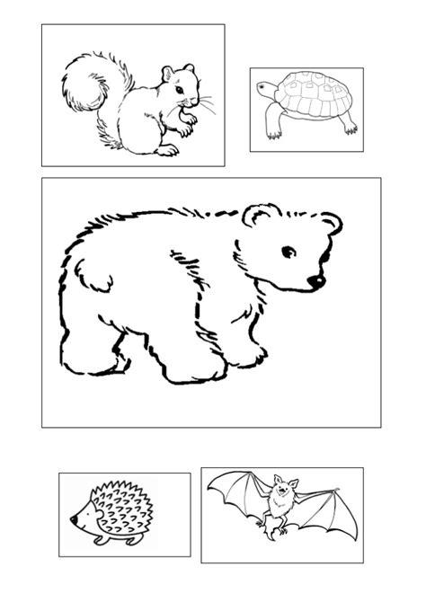 imagenes de animales que hibernan proyecto animales en oto 241 o fichas dibujos y dem 225 s recursos