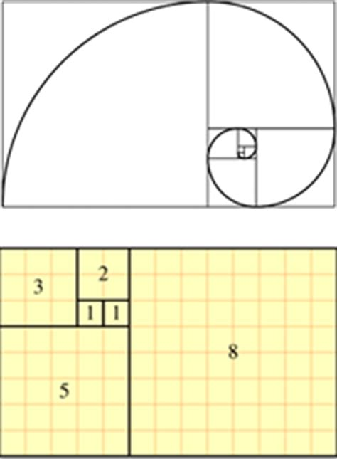 prime number pattern in nature fibonacci numbers a thorough explanation