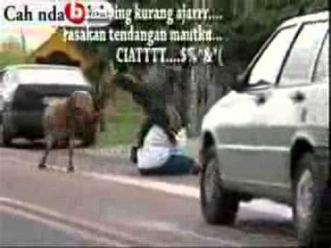 youtube film lucu bikin ngakak film lucu film komedi lucu kambing gila funny video
