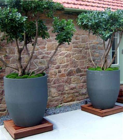 Ideas Design For Cement Planters Concept 25 Best Ideas About Contemporary Planters On Contemporary Gardens Contemporary
