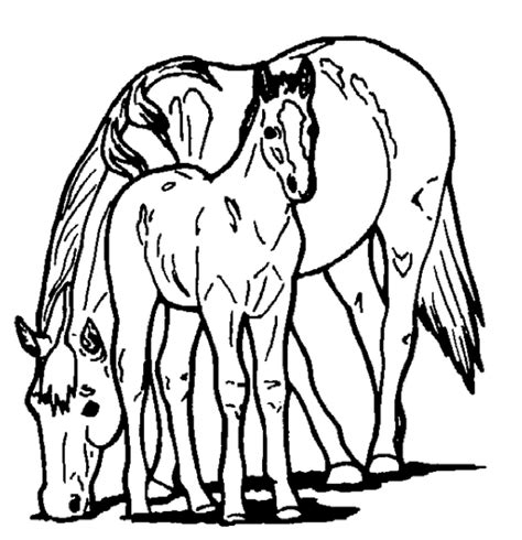 Coloring Pages Of Horses And Ponies | horse and pony coloring page coloring book