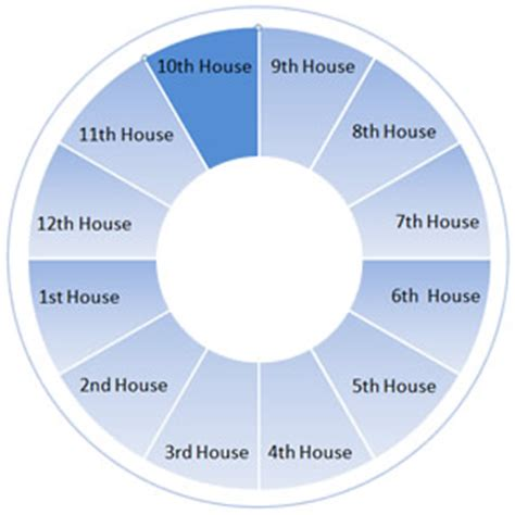tenth house astrology astrology planets signs and houses on stellardays com houses 10th house