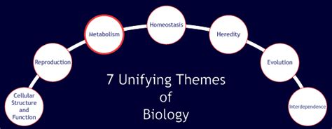 Unifying Themes Definition | science now star grant seven unifying themes of biology