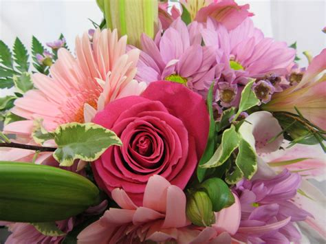 fresh cut flowers quot pink to the max quot cut flowers sudbury flower delivery l