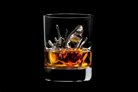 5 things you learn on a seeksherpa whisky tasting session