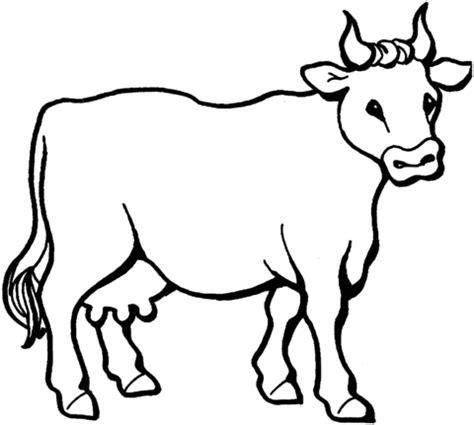ausmalbild friedliche kuh kostenlos zum