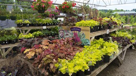 greenleaf garden centers greenleaf landscapes