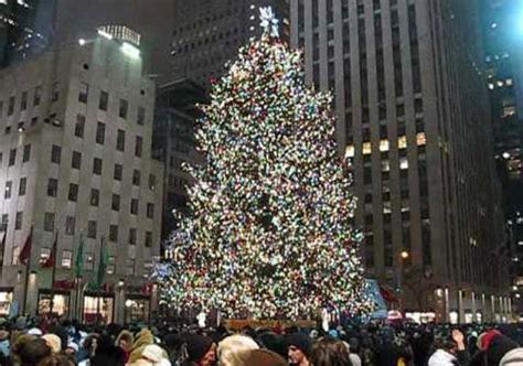 in new york 85 foot tall 13 tonne christmas tree