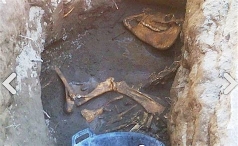 Batu Akik Huruf L Besar penemuan fosil di bantul dinosaurus atau kuda mataram