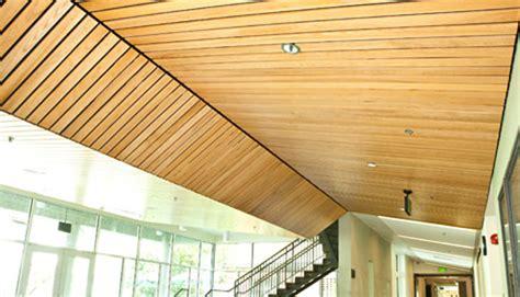 9 wood acoustic wood ceilings 3rings