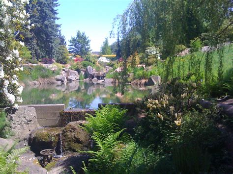 Kubota Gardens Seattle by Eats Interests Seattle Things To Eat Do A Casual