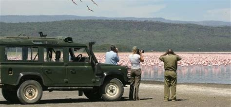 comptoir des animaux voyage observation des animaux vacances et circuit sur