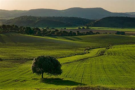 imagenes de paisajes que enamoran paisajes rurales ambrosio s 225 nchez