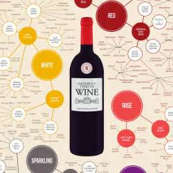 common types of wine top varieties to know wine folly