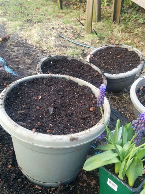 Vegetable Garden Soil Composition Soil Gastronomy At Bu