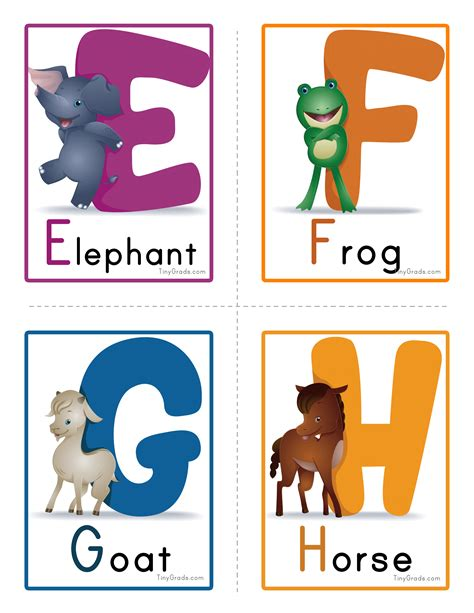 learn the alphabet learn abc with animal pictures teach your child to recognize the letters of the alphabet abcd for books various worksheets and flascards wtl