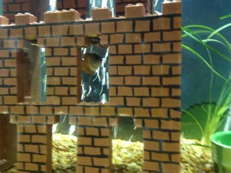 Mario Brothers Aquarium Decorations by Mario Bros Aquarium Diy Project Is One You Ll