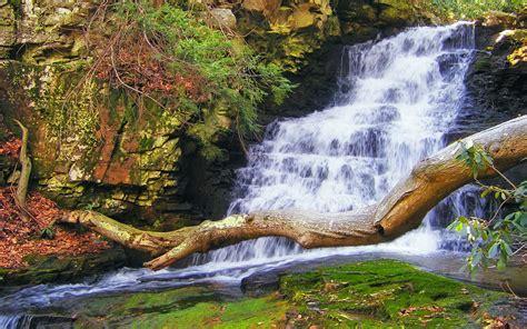 hidden waterfall wallpaper 938 wide screen wallpaper descend waterfalls wallpaper 135516