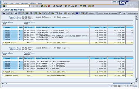 layout definition sap sap list viewer basics erp financials scn wiki