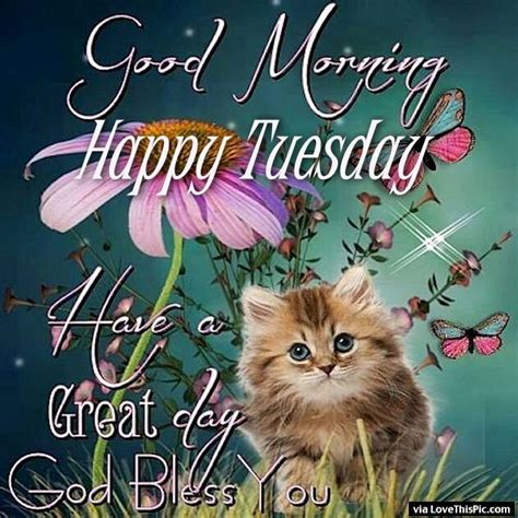 a great tuesday images morning happy tuesday a great day pictures