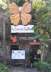 pr 233 sentation jardin des papillons martinique