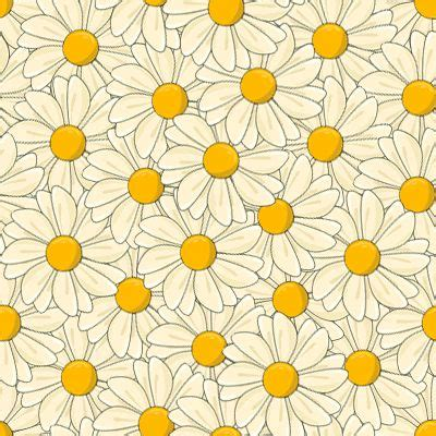daisy pattern hd floral wallpaper tumblr on flower background tumblr